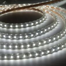 Лента светодиодная 60SMD (3528) 4.8W/m /12V/СW, холодный белый, 1м LS603