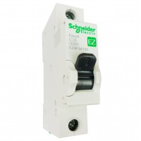Авт. выкл. Schneider Electric С 1П 25А Easy9, EZ9F34125  (1/12)