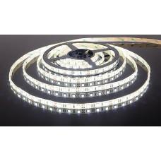 Лента светодиодная 60SMD (2835) 4.8W/m/12V/CW, холодный белый, 5м (цена за 1м), SBL-IP20_4.8-CW
